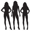 Sexy women standing in different poses, set of isolated vector silhouettes