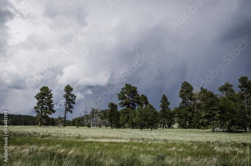 Keuken foto achterwand Donkergrijs Storm over Valle Vidal. New Mexico