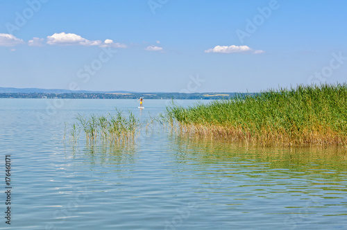 Lone surfer and reed on Lake Balaton at Szabadisosto - Hungary Poster