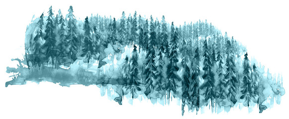 Watercolor group of trees - fir, pine, cedar, fir-tree. Blue, winter forest, landscape, forest landscape. Drawing on white isolated background. © helgafo