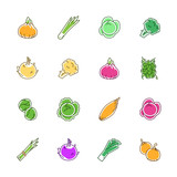 Vegetables icons - Onion, cabbage and cauliflower - 176481110