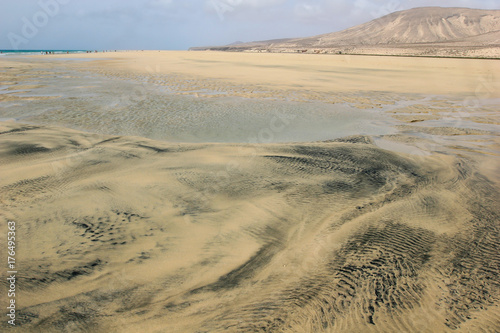 Papiers peints Iles Canaries Black patterns on wet gold sand created by the sea during an outflow on magnificent Sotavento beach, Fuerteventura, Canary Islands, Spain