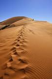 Namib desert - 176512366