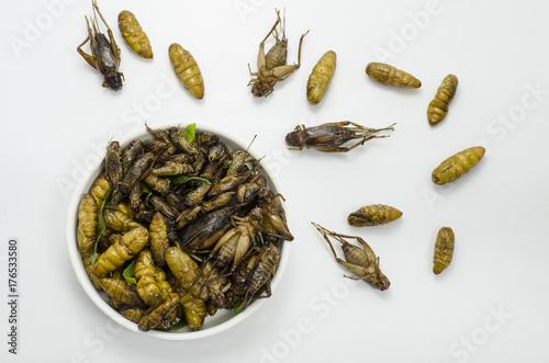 Aluminium Thailand Thai North east food fried warm and grasshopper