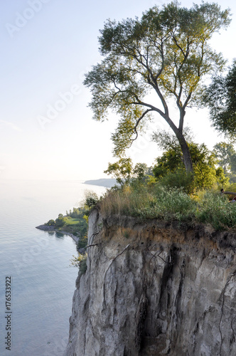 Tree on edge of cliff and Lake Ontario - Scarborough Bluffs - Toronto, Canada Poster
