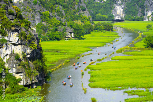 Foto op Plexiglas Lime groen Tourist ride boat for travel sight seeing Rice field on river