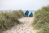 Weg zum Strand an der Ostsee - 176541115