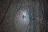 Fahrt in den Nebel - 176548162