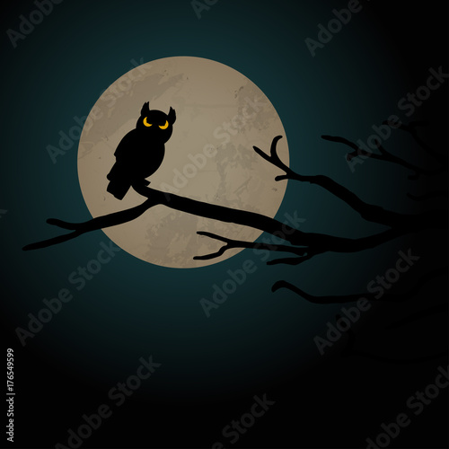 Foto op Aluminium Uilen cartoon Halloween scary owl background