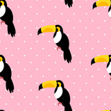 Seamless pattern in polka dot with toucans on pink background. Vector. - 176569324