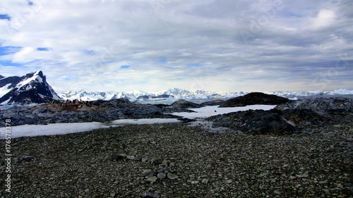 Papiers peints Gris traffic Antarctica