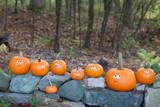 Pumpkins on rocks - 176580758