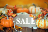 Autumn pumpkins with sale tag background - 176583391