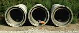 Three concrete sewer pipes - 176595179