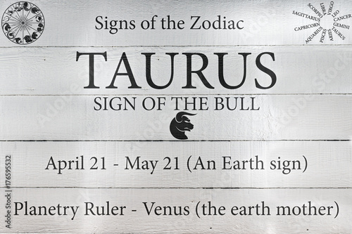 Hand Painted Wood Panel Zodiac Sign Taurus Poster