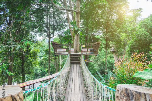Fototapeta rope bridge with rope for walking and hiking in nature on adventure tour in the forest. Step into jungle