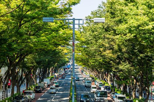 東京 表参道 Poster