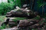 a bunch of wooden logs