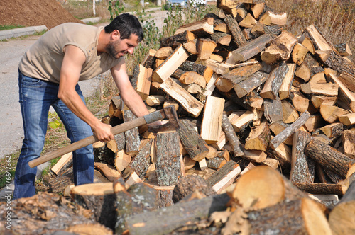 Lumberjack chopping wood for winter, Lumberjack chopping woods with old ax - 176647362