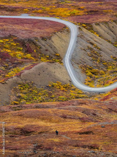 Papiers peints Miel Gravel Road winding through Tundra in Fall