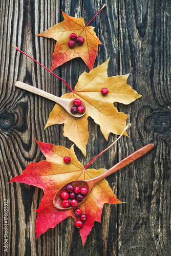 Poster berries of cranberries and a wooden spoon on a maple leaf on a wooden background