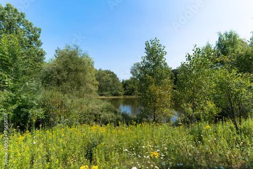Fotobehang Lente Pond in Distance