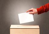 Ballot box with person casting vote - 176687738