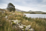 Evening landscape image of Llyn y Dywarchen lake in Autumn in Snowdonia National Park - 176690300
