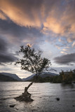 Beautiful landscape image of Llyn Padarn at sunrise in Autumn in Snowfonia National Park - 176690776
