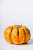 Pretty pumpkin on light background, front view. - 176693110