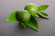 two green limes with leaves on a gray background