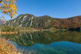 Herbst am Almsee - 176746739