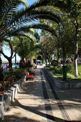 Fotobehang Rio de Janeiro Ein Park in Tavira
