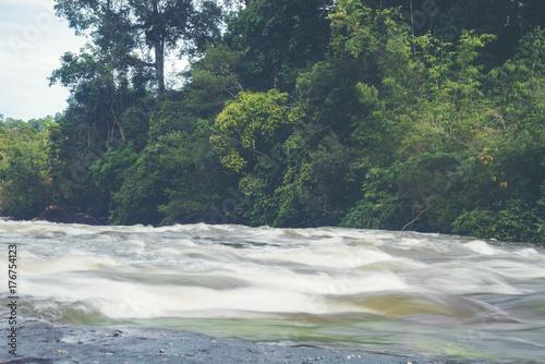 Keuken foto achterwand Olijf stream river in tropical forest, Thailand