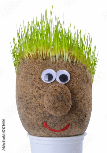Papiers peints Herbe Head with grass on top