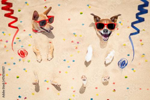 Papiers peints Chien de Crazy happy new year dogs at the beach