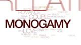 Monogamy animated word cloud, text design animation. Kinetic typography. - 176776915