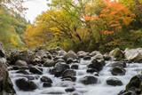 中津川渓谷 - 176780352