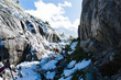 Quadro Dog hikes through a snowy pass in the Ansel Adams wilderness