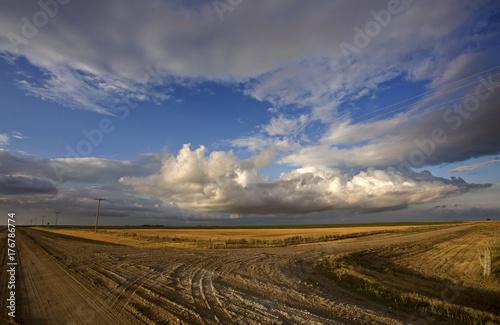 Fotobehang Zomer Prairie Scene Saskatchewan