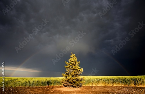 Fotobehang Natuur Storm Clouds Canada