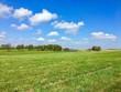 Countryside landscape - 176796957