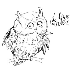 Owl sitting on tree branch and looking at camera at white. I love winter calligraphy phrase.