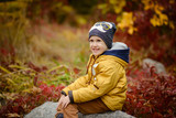 Cute little kid boy on autumn day. Preschool child in colorful autumnal clothes - 176814744