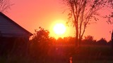 epic country sunset with bugs and pollen in the air 4k - 176838101
