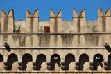 Villa Farnesina a Roma - 176854388