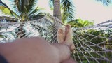 Man swing and relax in hammock - 176859335