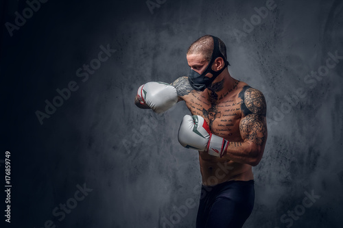 Boxer training with shadow Poster
