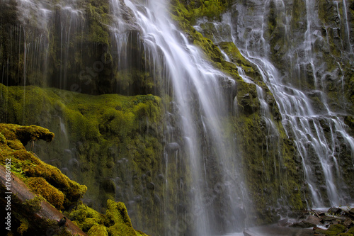 Proxy Falls Closeup - 176860152