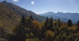 Flying in beautiful autumn mountains between the tops of trees - 176866113